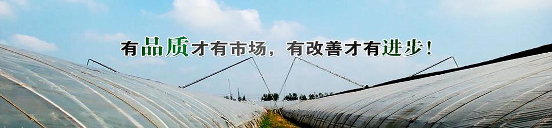 济南温室大棚材料