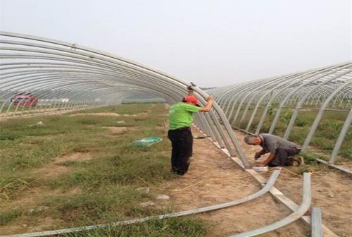 济南温室大棚工程案例