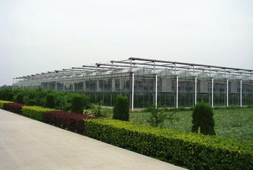 济南温室大棚